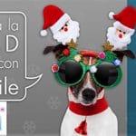 ION MOBILE mejora su tarifa AS sin cobrar exceso 1GB 6,95€ para competir mejor.